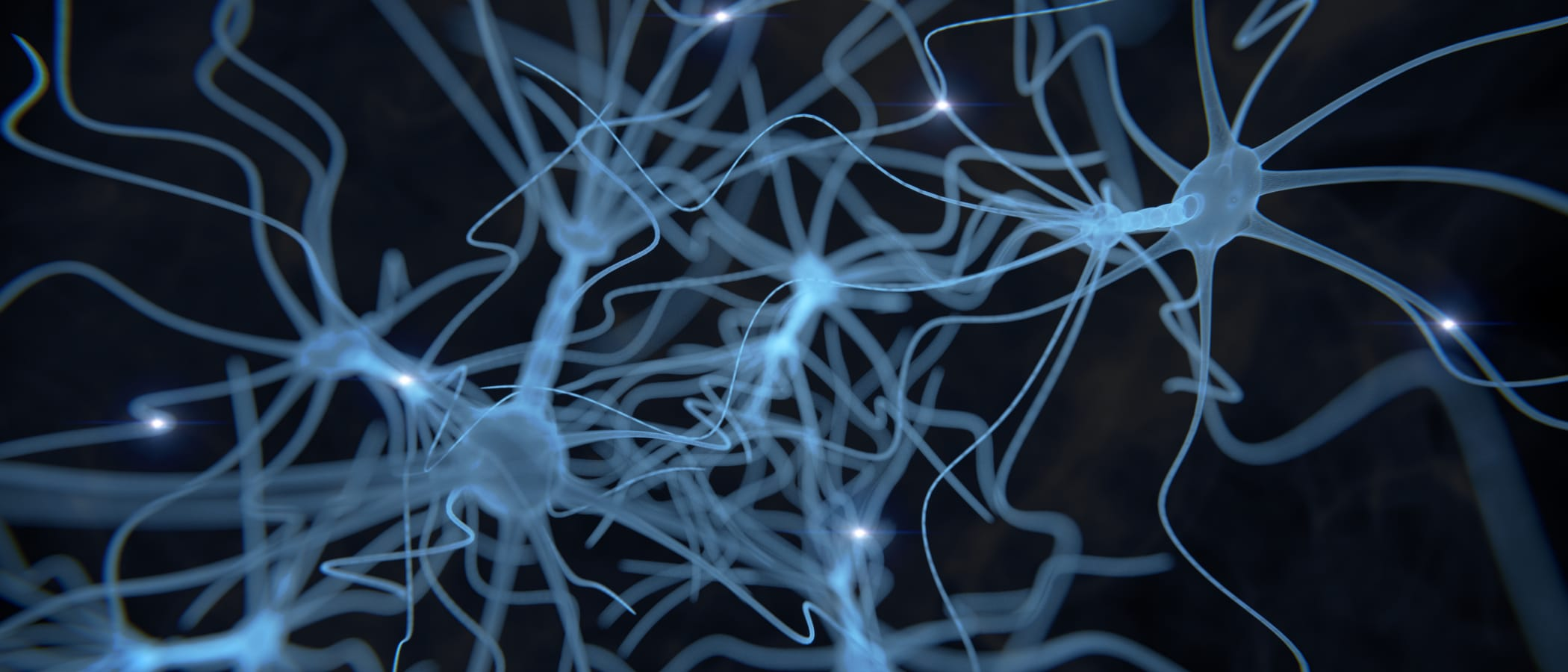 Neurodiversity as a Competitive Advantage