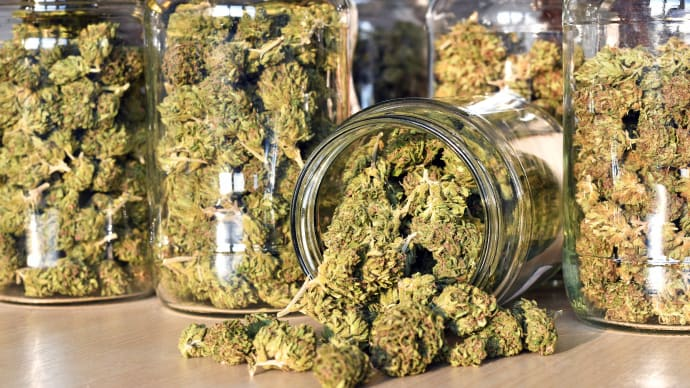 The ABCs of THC: What Employers Need to Know About Marijuana Laws
