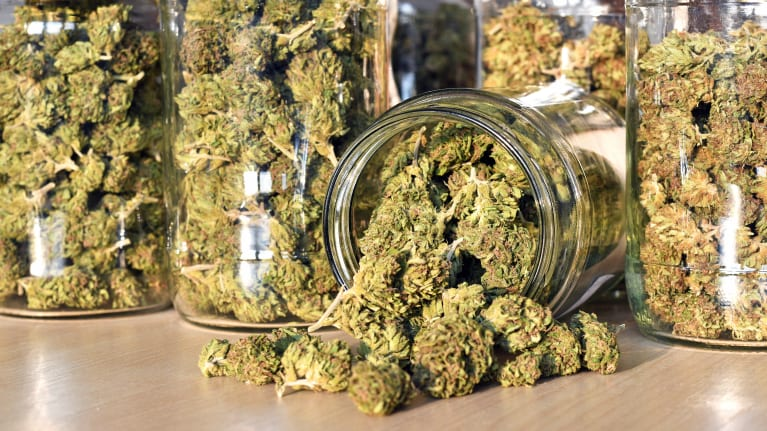 Top Employer Questions About Weed and the Workplace