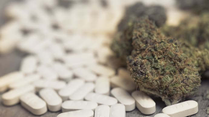 Marijuana Laws, Opioid Crisis Prompt Workplace Policy Updates