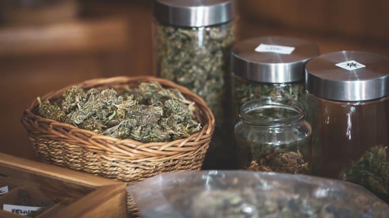 More States Legalize Marijuana Use