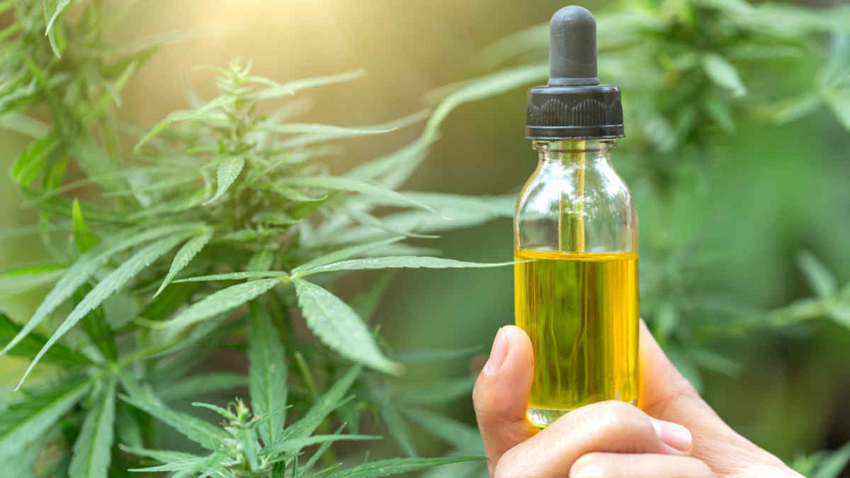 CBD Oil vs. Hempseed Oil: What's the ...healthline.com