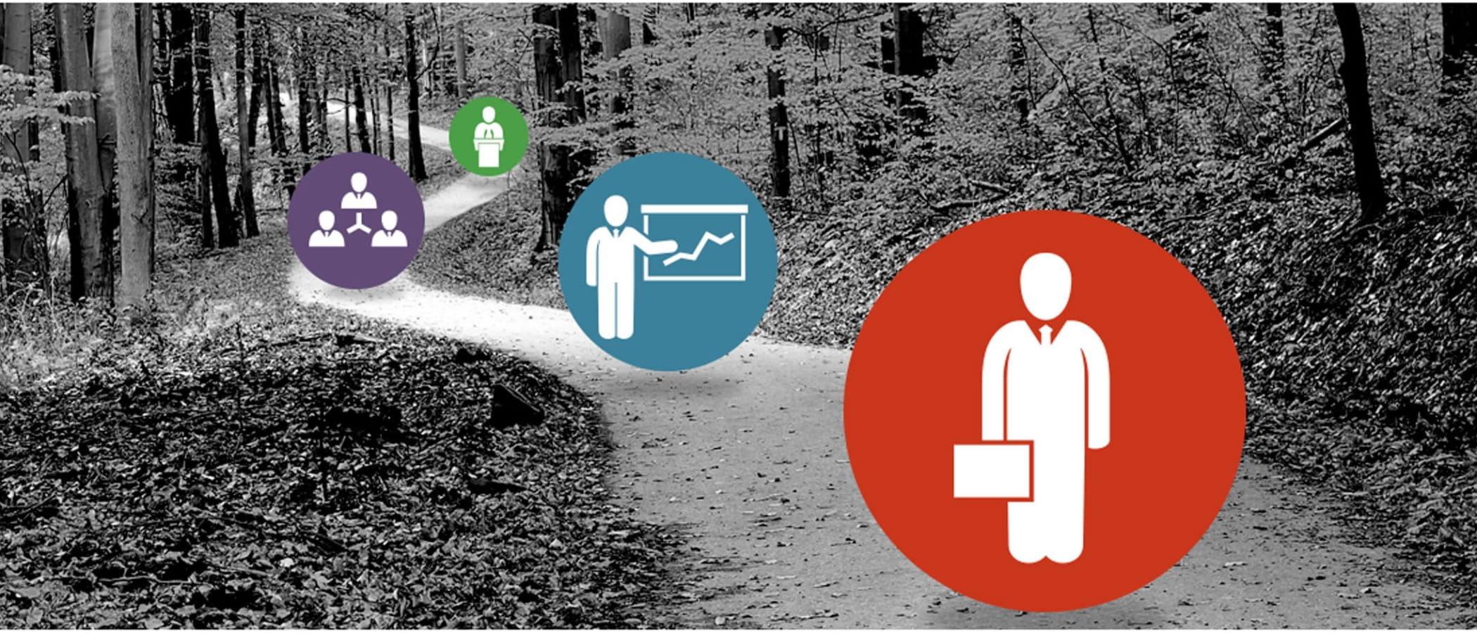 The Road to HR Career Success